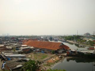 Aasunda_kelapa_044